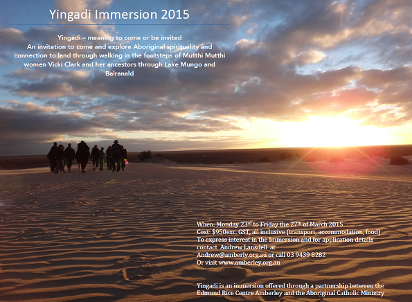 Immersion 2015